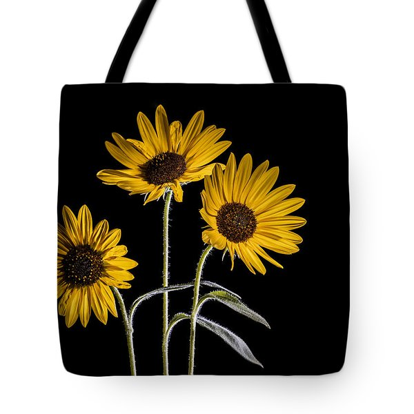 Three Sunflowers Light Painted On Black Tote Bag by Vishwanath Bhat