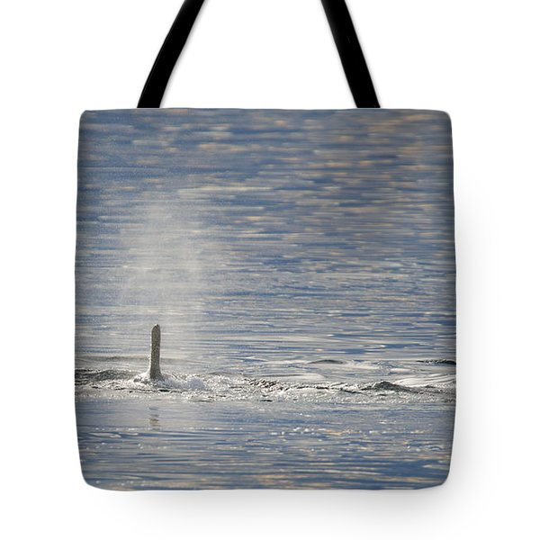 Three Surface Tote Bag
