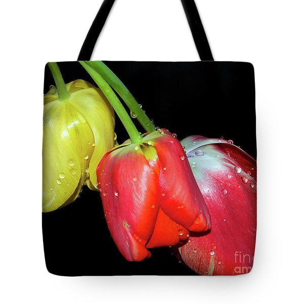 Tote Bag featuring the photograph Three Tulips by Elvira Ladocki