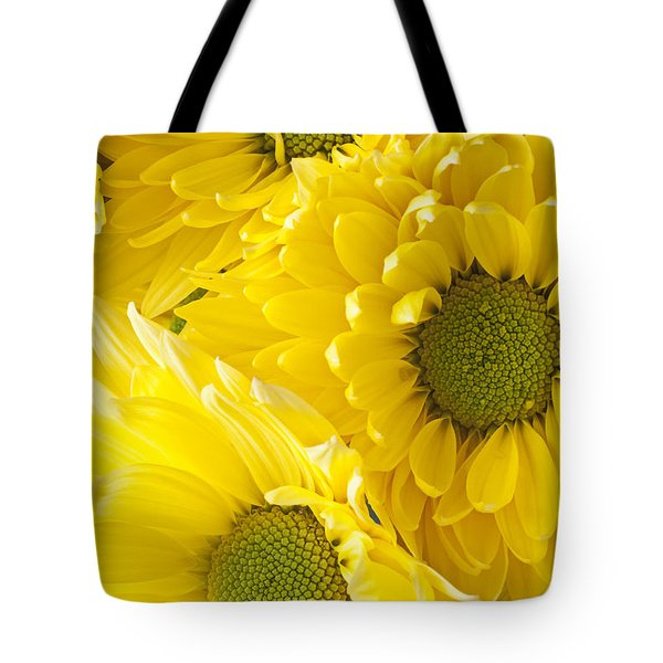 Three Yellow Daisies  Tote Bag