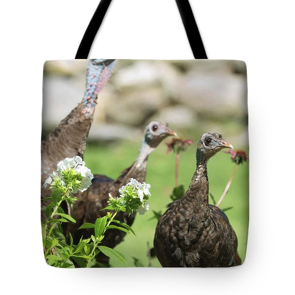 Threes A Crowd Tote Bag
