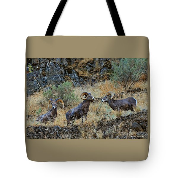 Three's Company Tote Bag by Steve Warnstaff