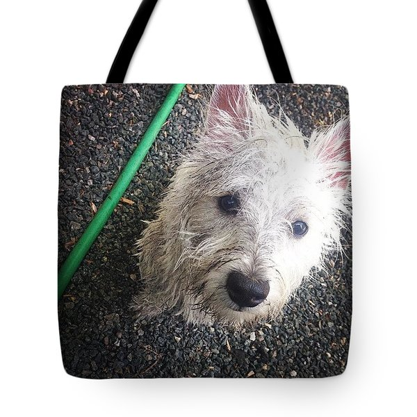 Wild Willie Discovers The Hose Tote Bag
