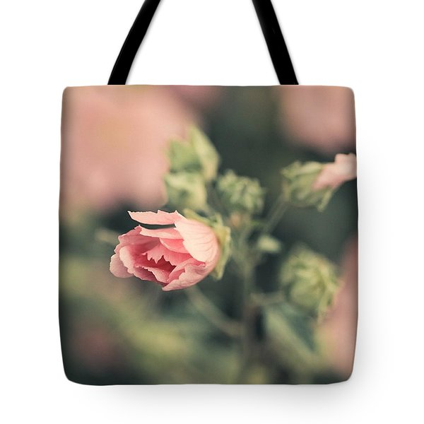 Thüringer Strauchpappel (lavatera Tote Bag