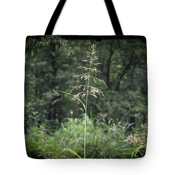Through The Barn Tote Bag