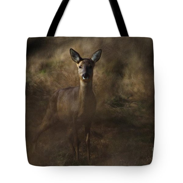 Through The Hedge Row  Tote Bag