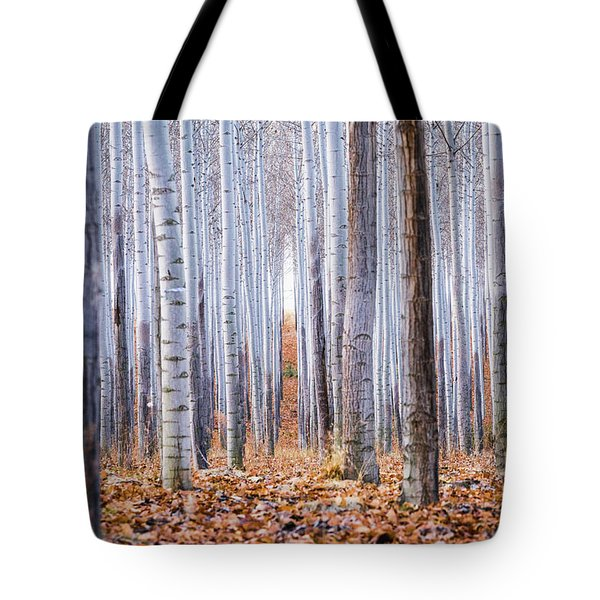 Through The Layers Tote Bag