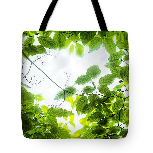 Tote Bag featuring the photograph Through The Leaves by David Coblitz