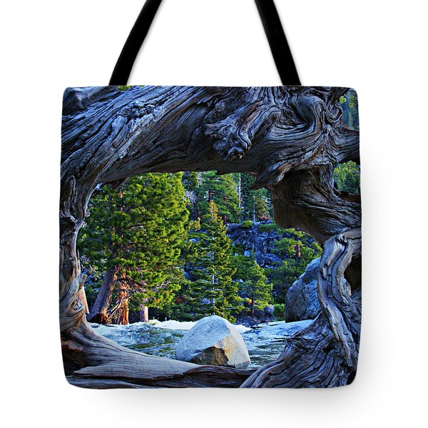 Through The Looking Glass Tote Bag by Sean Sarsfield