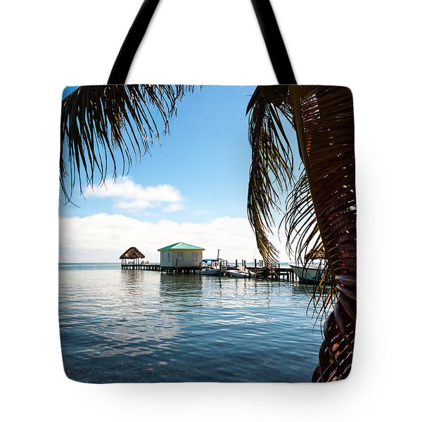 Through The Palm Leaves Tote Bag