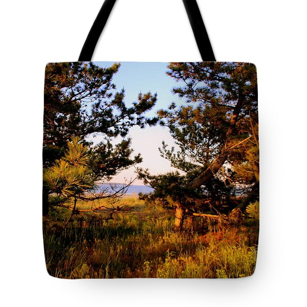 Through The Pine Grove Tote Bag