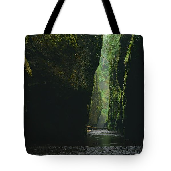 Through The River Tote Bag