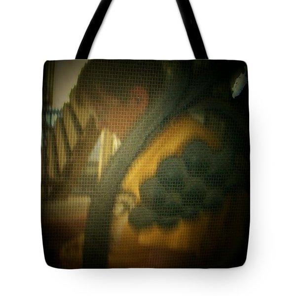 Through The Screen Door Tote Bag by Lenore Senior