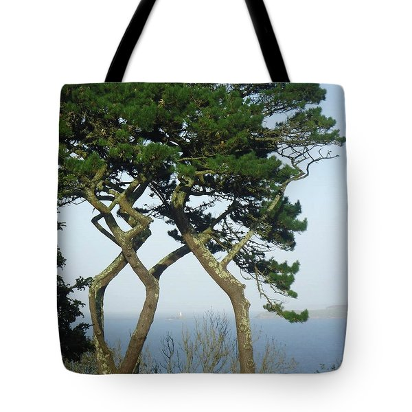 Through The Trees To Godrevy From St. Ives Tote Bag