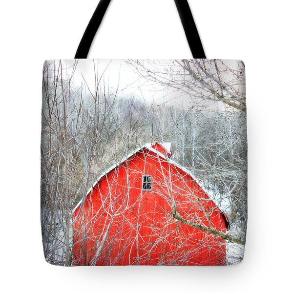 Tote Bag featuring the photograph Through The Woods by Julie Hamilton