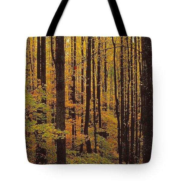Through The Yellow Veil Tote Bag