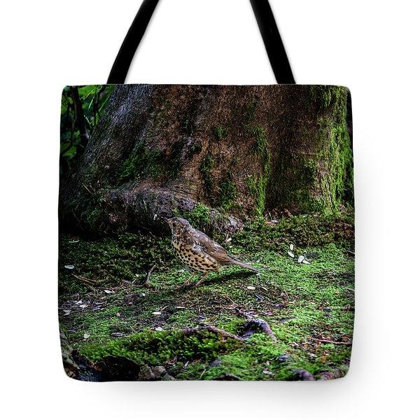 Thrush Tote Bag