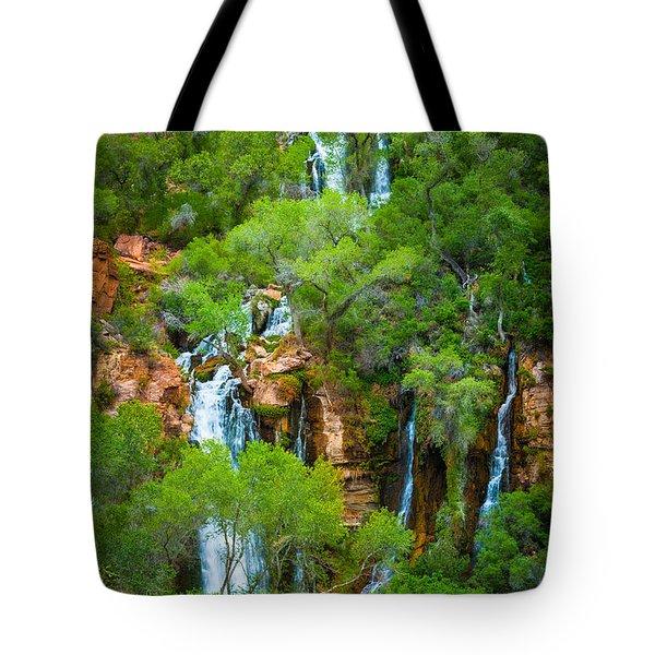 Thunder River Oasis Tote Bag