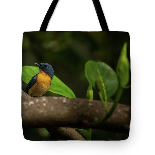 Tickell's Blue Flycatcher Tote Bag by Venura Herath