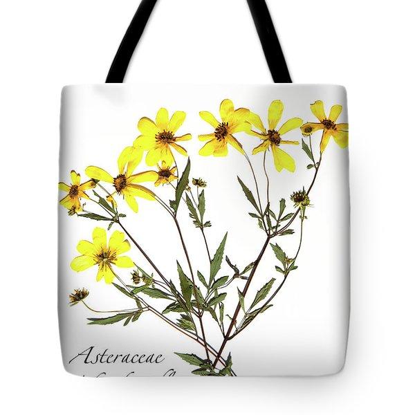 Tickseed Sunflower Tote Bag