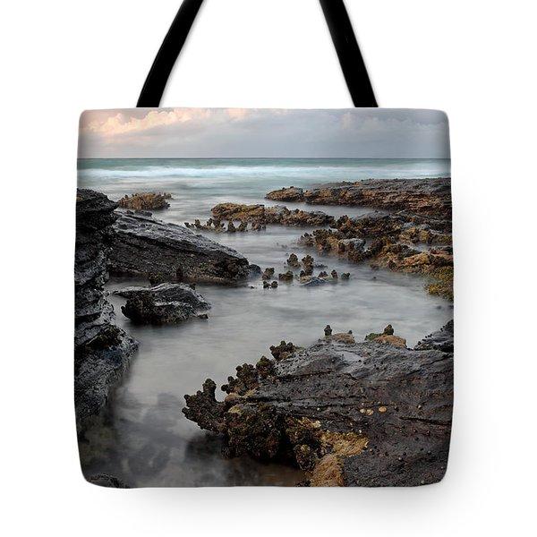 Tidal 2 Tote Bag