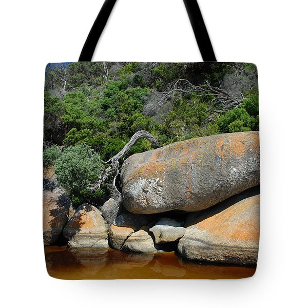 Tidal River Tote Bag by Robert Lacy