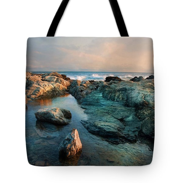 Tote Bag featuring the photograph Tide Pool by Robin-Lee Vieira