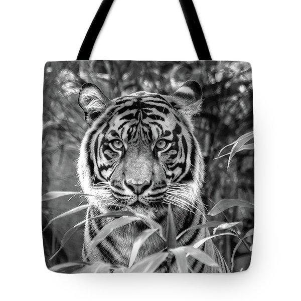 Tiger B/w Tote Bag