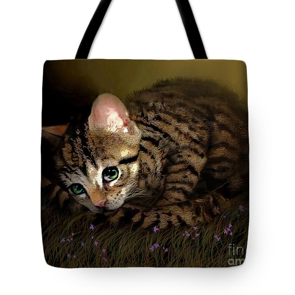 Tiger Ball Tote Bag by Robert Foster