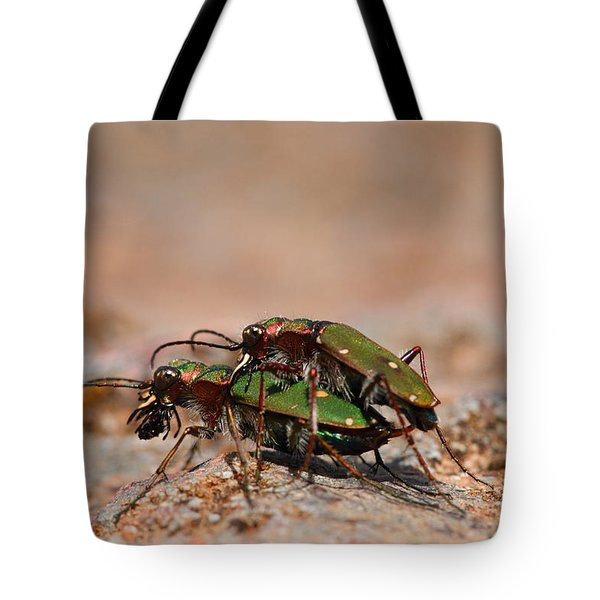 Tote Bag featuring the photograph Tiger Beetle by Richard Patmore