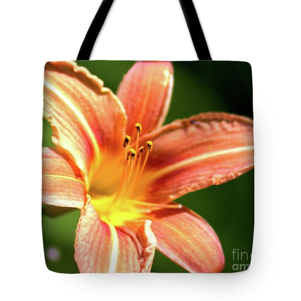 Tote Bag featuring the photograph Tiger Bright by Baggieoldboy