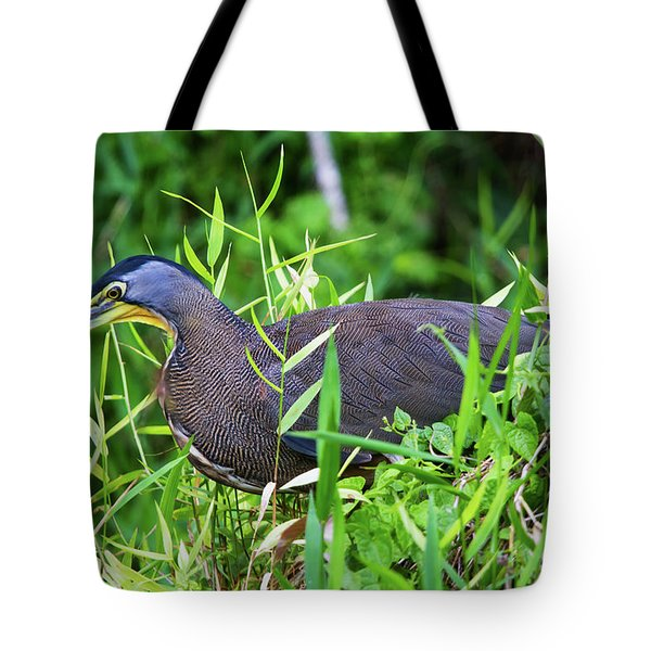 Tote Bag featuring the photograph Tiger Heron 2 by Arthur Dodd