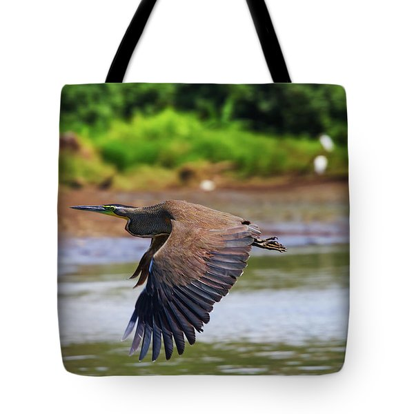 Tiger Heron Tote Bag