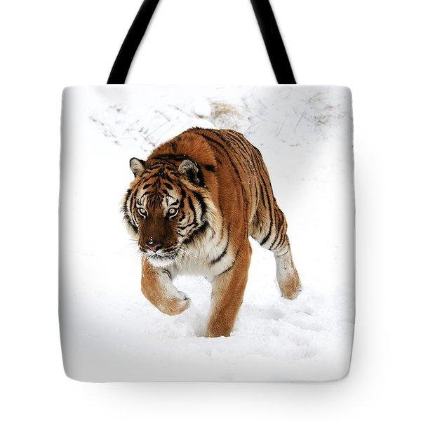 Tiger In Snow Tote Bag
