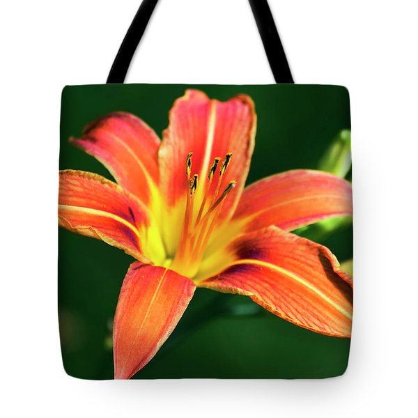 Tote Bag featuring the photograph Tiger Lily by Christina Rollo