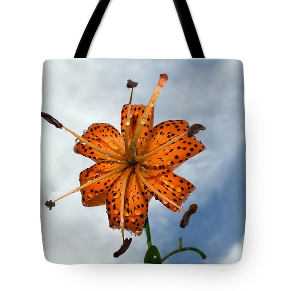 Tiger Lily In A Shower Tote Bag