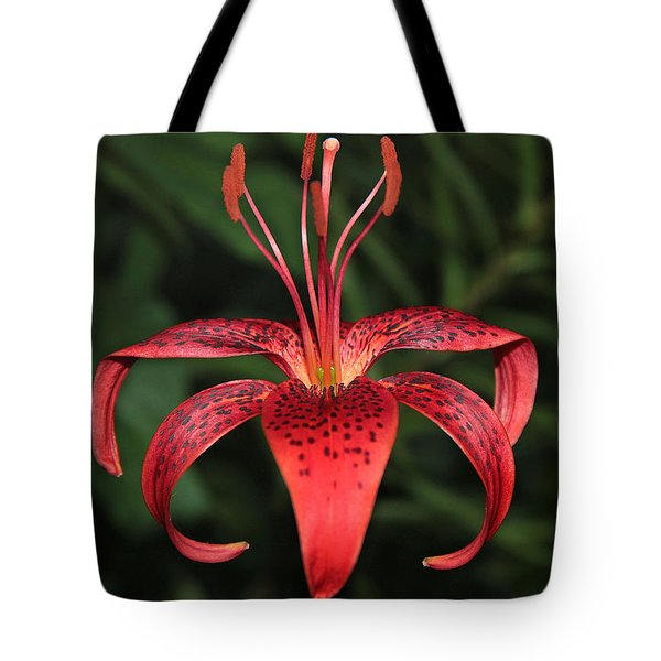Tiger Lily Tote Bag by Sergey Lukashin