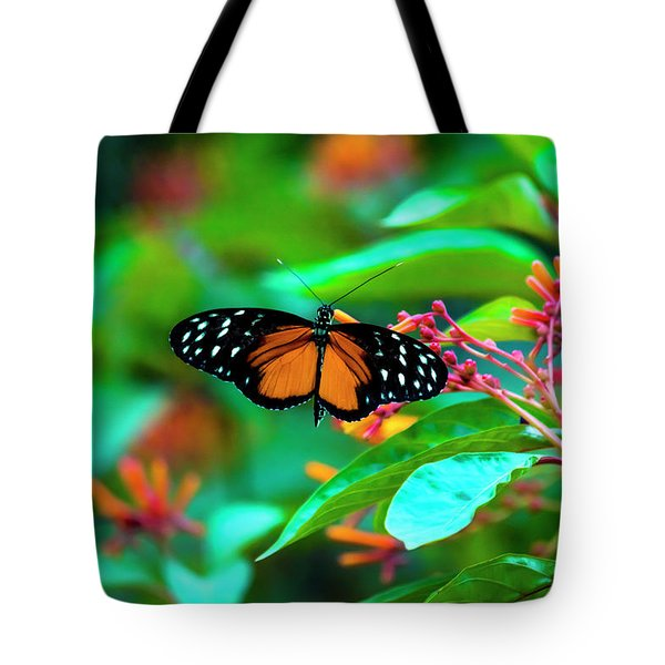 Tote Bag featuring the photograph Tiger Longwing Butterfly by David Morefield