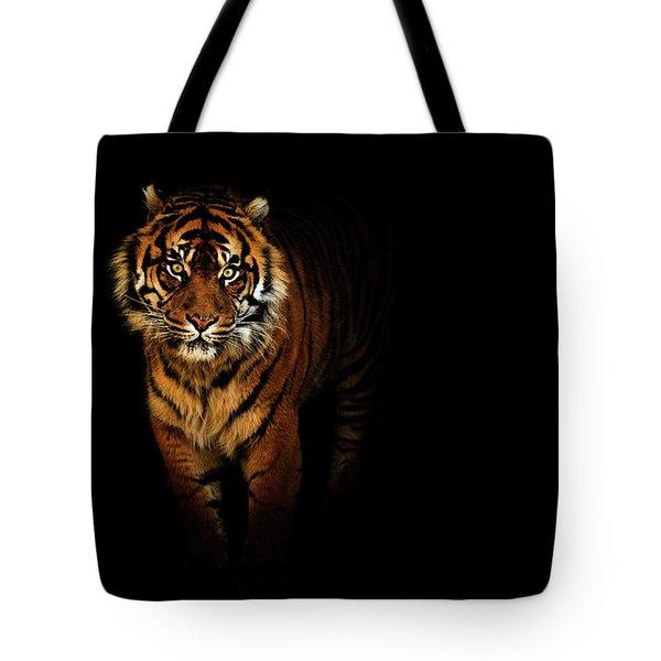 Tiger On A Black Background Tote Bag