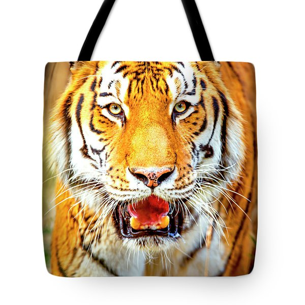 Tiger On The Hunt Tote Bag by David Millenheft