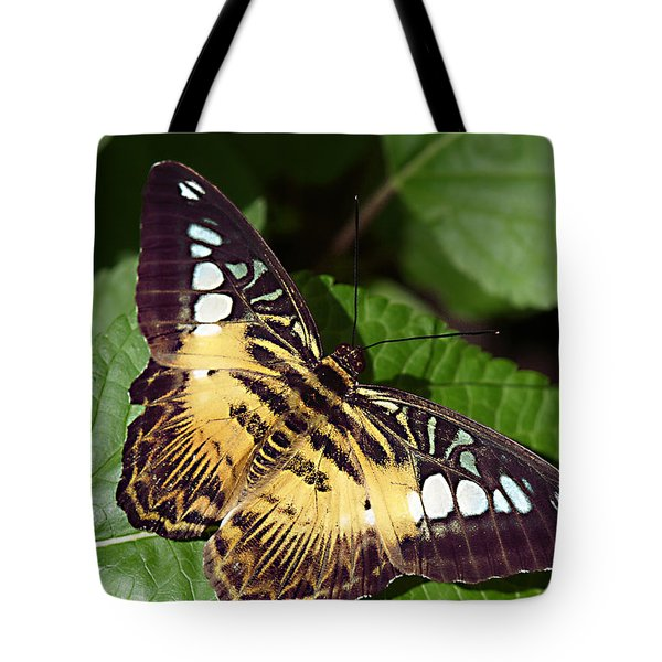 Tiger Print --- Clipper Butterfly Tote Bag