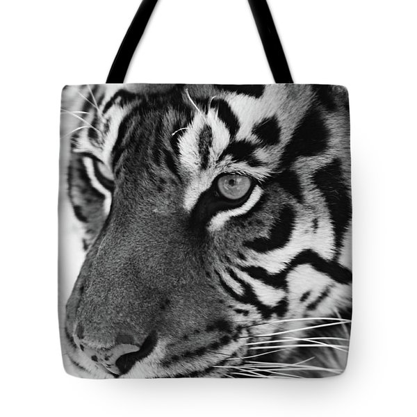 Tigress In Black And White Tote Bag by Kandy Hurley