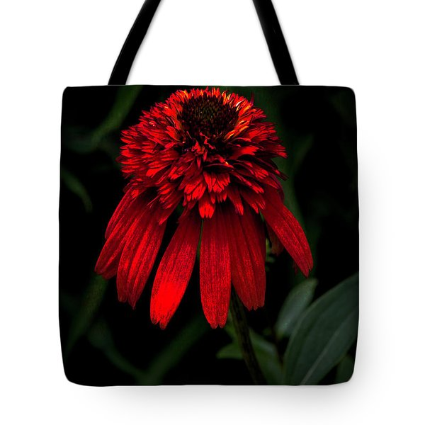 Tote Bag featuring the photograph Tiki Torch by Judy Wolinsky