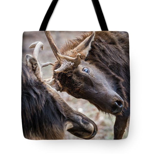Tote Bag featuring the photograph Tilt by Andrea Silies