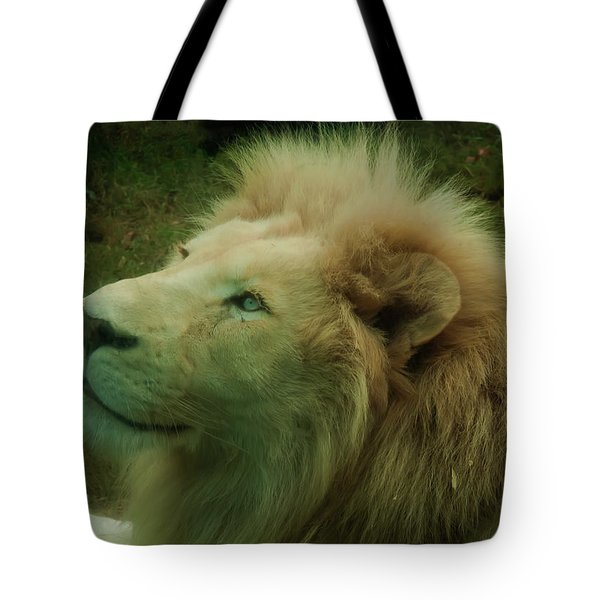 Tote Bag featuring the photograph Timbavati White Lion by Chris Flees