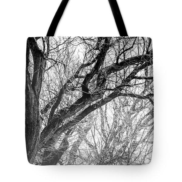 Timber Tentacles Tote Bag
