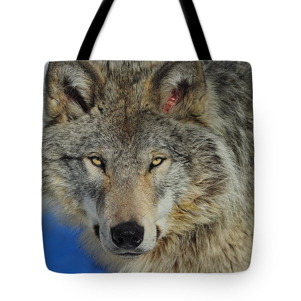 Timber Wolf Portrait Tote Bag