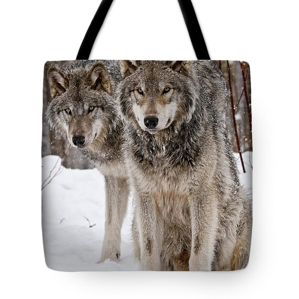 Timber Wolves In Winter Tote Bag by Michael Cummings