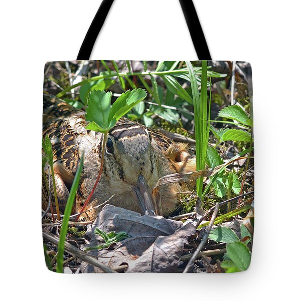 Timberdoodle Hen At Her Nest Tote Bag