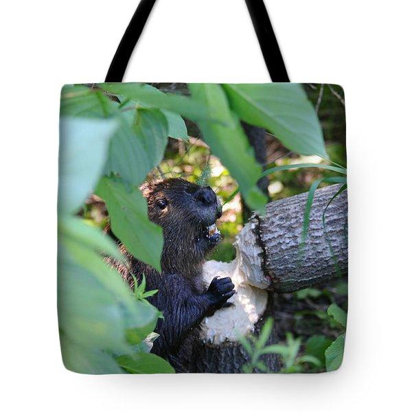 Timberrrrr Tote Bag